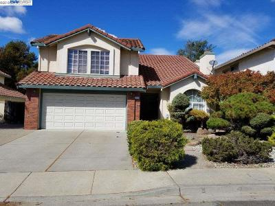 Castro Valley Single Family Home For Sale: 18980 Mt Lassen Drive