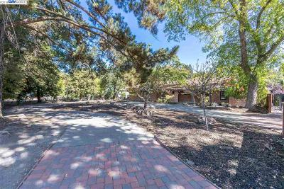 Walnut Creek Single Family Home Pending Show For Backups: 270 Montecillo Dr