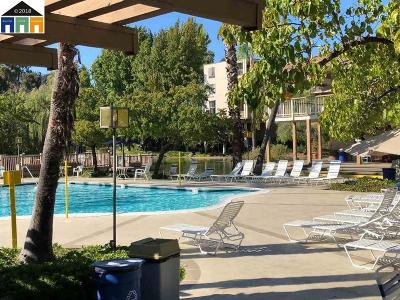 Walnut Creek Condo/Townhouse Price Change: 490 N Civic Dr #205