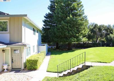 Pleasanton Condo/Townhouse New: 2219 Segundo Ct