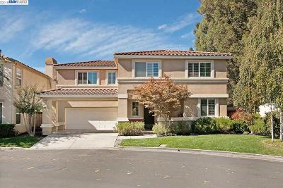 Livermore Single Family Home New: 2307 Rapallo Cmn