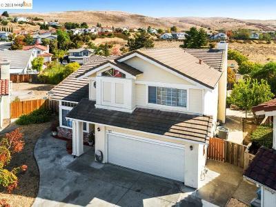 Vallejo Single Family Home New: 148 Joel Ct