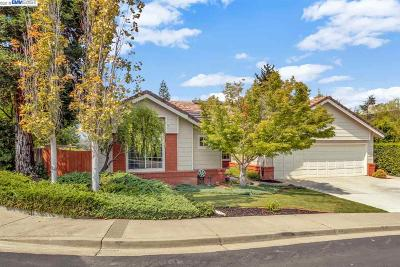Pleasanton Single Family Home New: 889 Hopkins Way