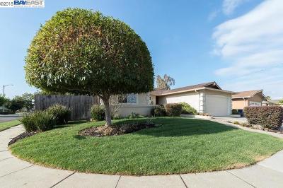 Fremont, Newark, Union City Single Family Home New: 38897 Florence Way