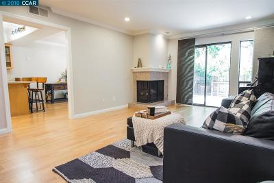 Walnut Creek Condo/Townhouse New: 820 Tampico