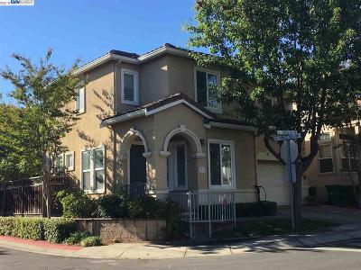 San Ramon Single Family Home New: 37 Terraced Hills Circle