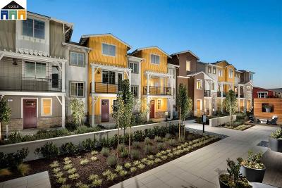 Dublin, Livermore, Pleasanton Condo/Townhouse New: 849 Tranquility Circle #2