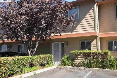 Alameda County Condo/Townhouse New: 260 Flint #16