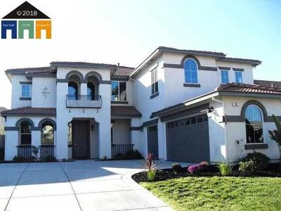 Oakley Single Family Home New: 15 Da Vinci Ct
