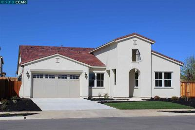 Brentwood, Discovery Bay, Oakley Single Family Home New: 310 Jensen Way