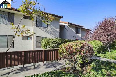 Hayward Condo/Townhouse New: 22103 Vista Del Plaza #8