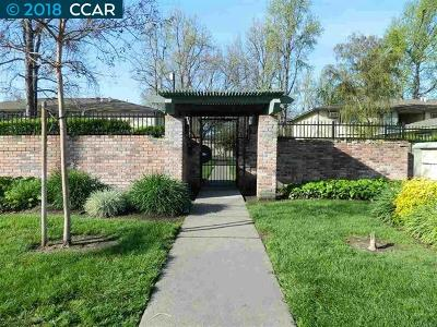 Concord Condo/Townhouse New: 1133 Meadow Lane #75