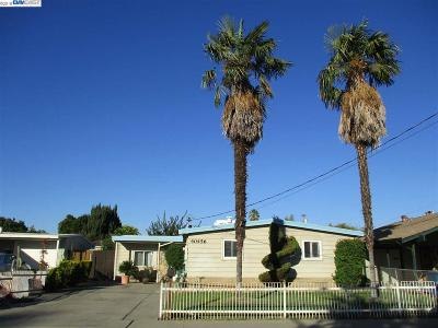 Fremont Single Family Home For Sale: 40456 Vogel Ct