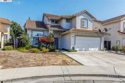 Hayward Single Family Home New: 24950 Plum Tree St