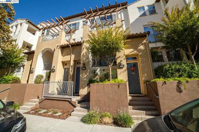 Dublin, Livermore, Pleasanton Condo/Townhouse New: 4255 Clarinbridge Cir