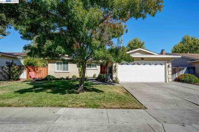 Pleasanton CA Single Family Home New: $1,000,000