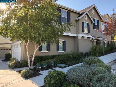 Martinez Single Family Home New: 543 Falling Star Drive