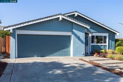 San Jose Single Family Home New: 263 Clearpark Circle