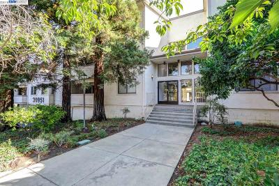 Fremont Condo/Townhouse For Sale: 39951 Fremont Blvd #216