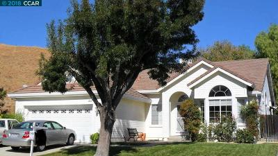 Antioch Single Family Home New: 3921 E Larkspur Dr