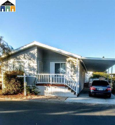 Hayward Mobile Home Pending Show For Backups: 1447 Alcazar Ave