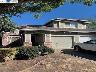 Antioch Single Family Home New: 3105 Ferngrove Way