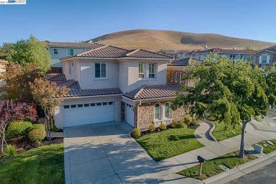 San Ramon Single Family Home For Sale: 829 Bandol Way