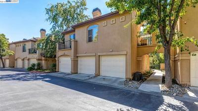 Dublin Condo/Townhouse Pending Show For Backups: 7678 Tuscany Dr