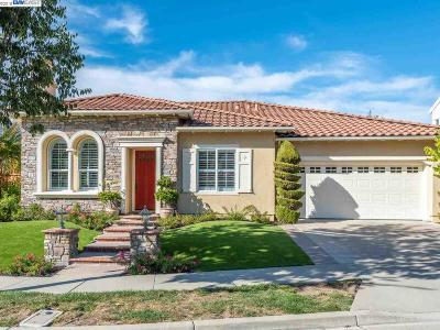 San Ramon Single Family Home For Sale: 701 Hollyview Ct