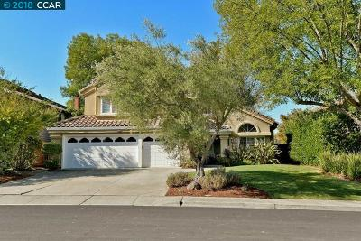 Danville Single Family Home Price Change: 91 Hillview Dr