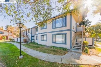 Union City Condo/Townhouse For Sale: 218 Entrada Plz