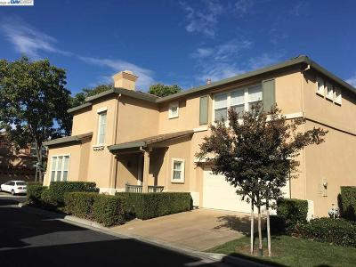 Pleasanton Rental For Rent: 5281 Arrezzo St
