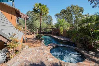 Walnut Creek Single Family Home For Sale: 25 Oak Knoll Loop