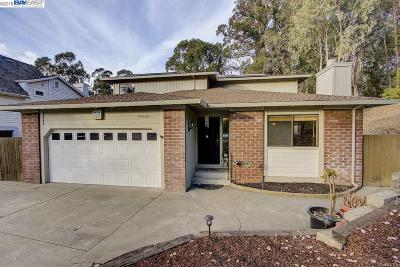 Hayward Single Family Home For Sale: 24506 Machado Ct