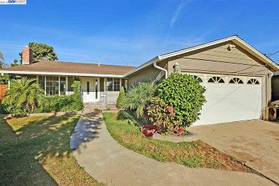Hayward Single Family Home For Sale: 26372 Chapman Ct