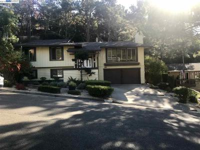 Hayward Single Family Home For Sale: 3427 Pinewood Dr