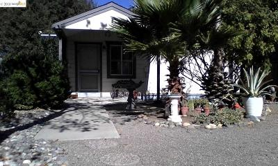 Antioch Single Family Home Pending Show For Backups: 1829 Stewart Ln