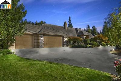 Stockton Single Family Home For Sale: 5049 Tudor Rose Gln