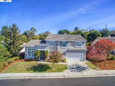 Hayward Single Family Home For Sale: 4110 Mystic View Ct
