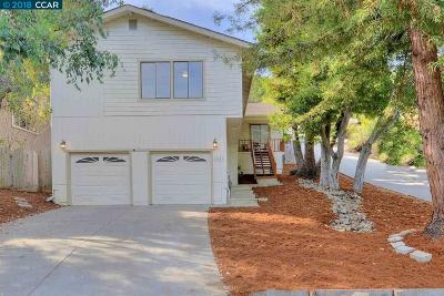 Albany, Berkeley, Concord, El Cerrito, El Sobrante, Emeryville, Hayward, Hercules, Lafayette, Orinda, Piedmont, Pinole, Pleasant Hill, Richmond, Rodeo, San Lorenzo, Union City, Walnut Creek Single Family Home For Sale: 26843 New Dobbel Ave