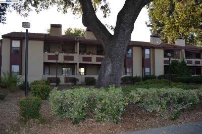 Concord Condo/Townhouse For Sale: 1391 Monument Blvd #9