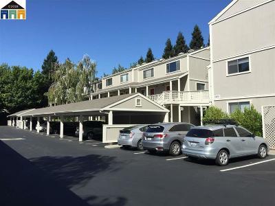 Walnut Creek Rental For Rent: 2723 Oak Rd #L