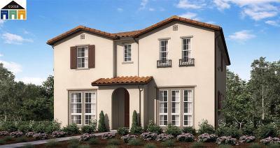 Mountain House Single Family Home For Sale: 1428 S Bella Vita