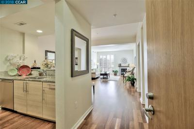 Walnut Creek Condo/Townhouse For Sale: 1655 N California Blvd #314