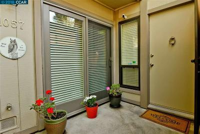 Danville Condo/Townhouse For Sale: 1057 San Ramon Valley Blvd.