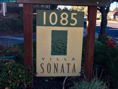 Alameda County Condo/Townhouse New: 1087 Murrieta Blvd #328