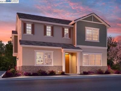 Mountain House Single Family Home Price Change: 1359 S Sauvignon Street