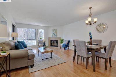 Fremont Condo/Townhouse For Sale: 39078 Guardino Drive #203