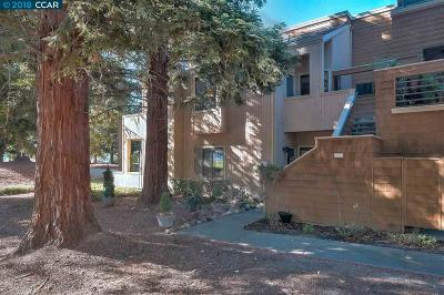 San Ramon Condo/Townhouse For Sale: 230 Copper Ridge Rd