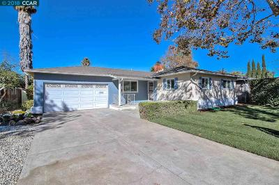 Concord Single Family Home For Sale: 3921 Beechwood Dr.